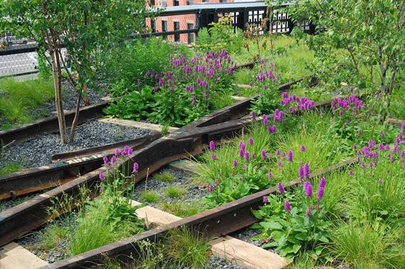 "NYC ""High Line"" Public Space"