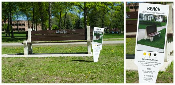 """Carmichael Collective"" ""urban art"" ""plant tags"" bench"