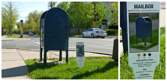 """Carmichael Collective"" ""urban art"" ""plant tags"" mailbox"